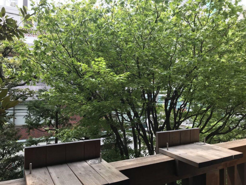 ブルーボトルコーヒー青山 テラス