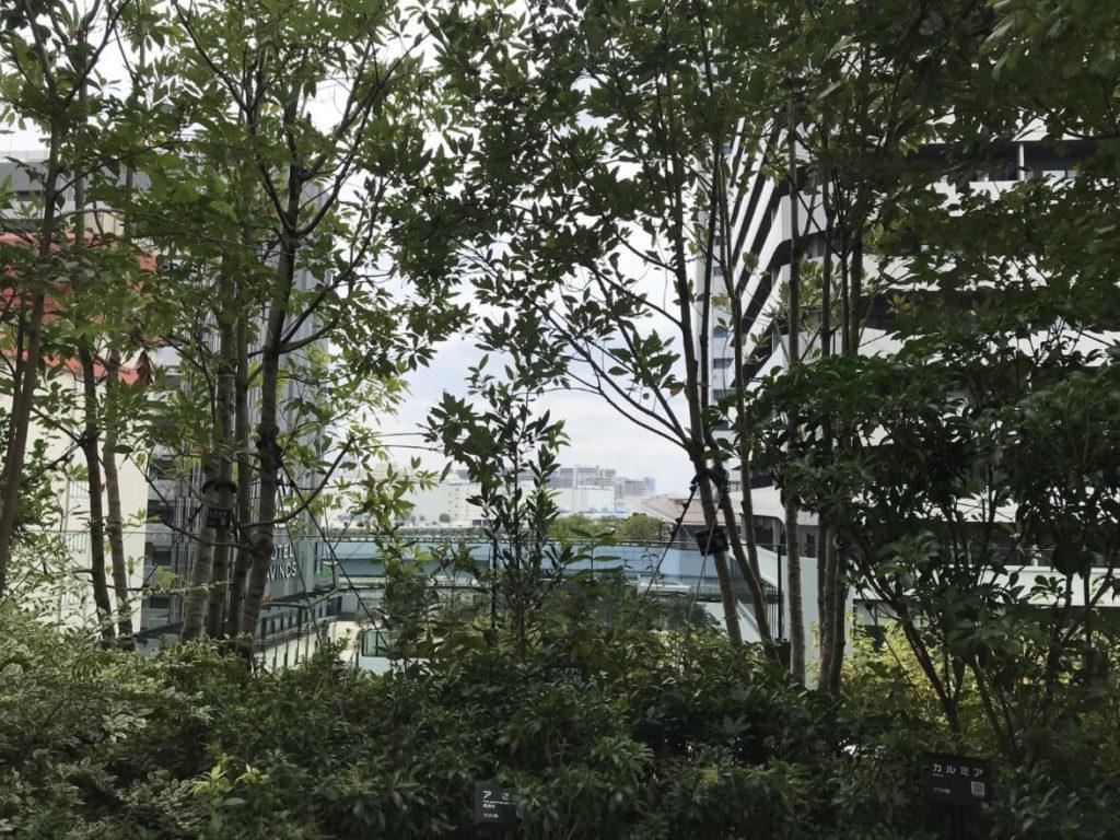 ポートシティ竹芝の庭
