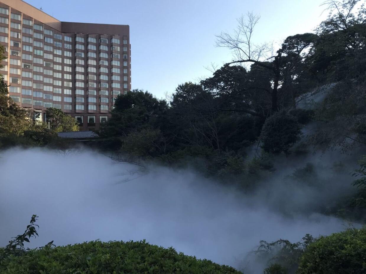 椿山荘 雲海