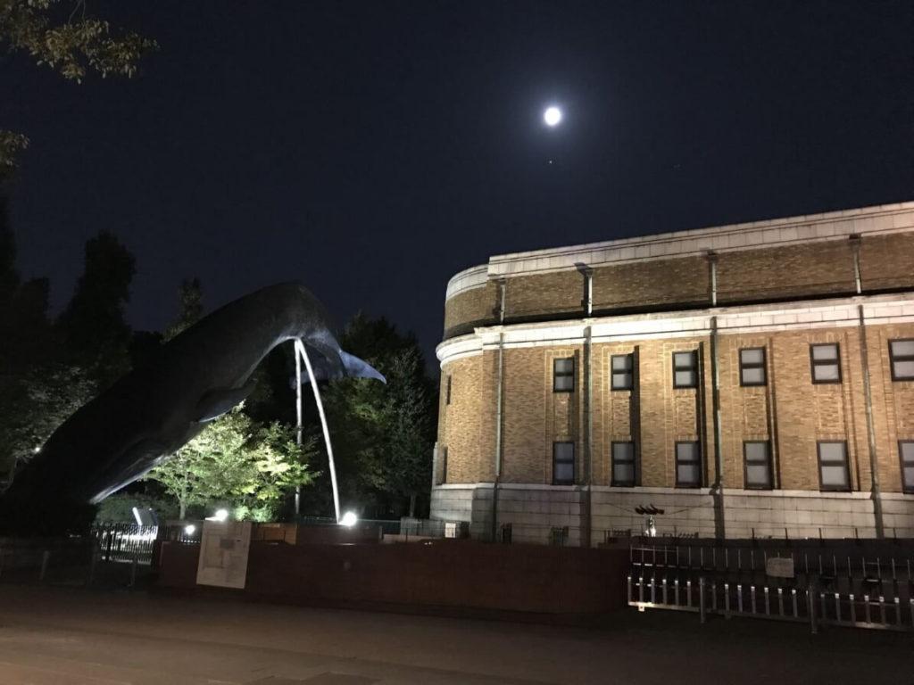 国立科学博物館のクジラと満月